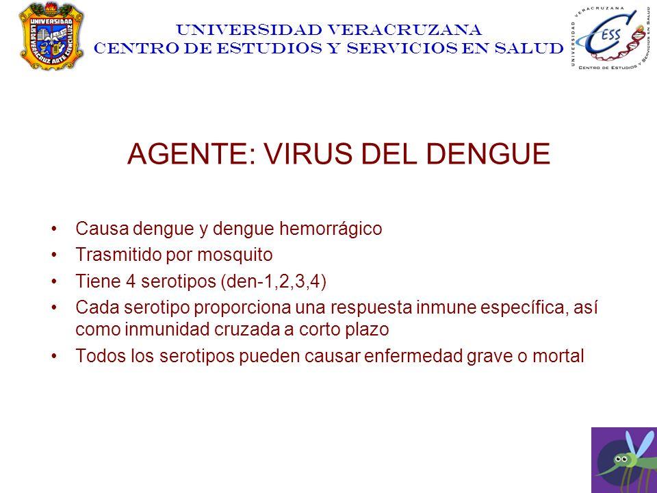 UNIVERSIDAD VERACRUZANA CENTRO DE ESTUDIOS Y SERVICIOS EN SALUD AGENTE: VIRUS DEL DENGUE Causa dengue y dengue hemorrágico Trasmitido por mosquito Tie