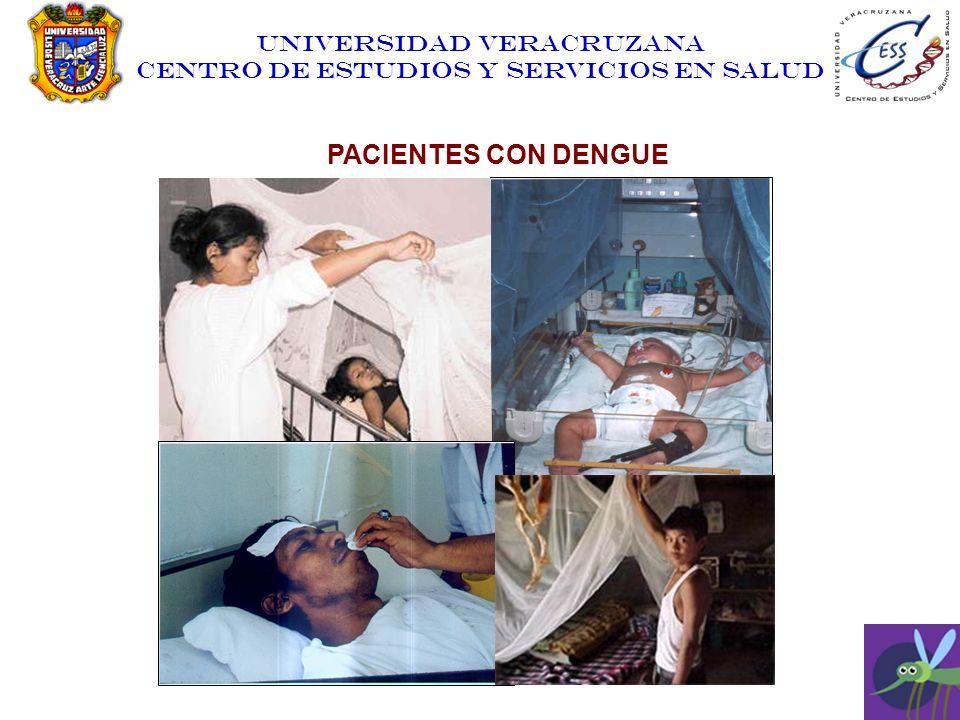 UNIVERSIDAD VERACRUZANA CENTRO DE ESTUDIOS Y SERVICIOS EN SALUD PACIENTES CON DENGUE