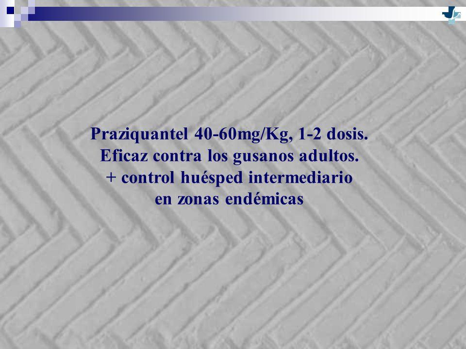 Praziquantel 40-60mg/Kg, 1-2 dosis. Eficaz contra los gusanos adultos. + control huésped intermediario en zonas endémicas