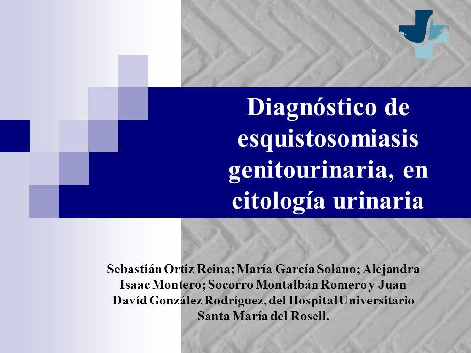 Diagnóstico de esquistosomiasis genitourinaria, en citología urinaria Sebastián Ortiz Reina; María García Solano; Alejandra Isaac Montero; Socorro Mon