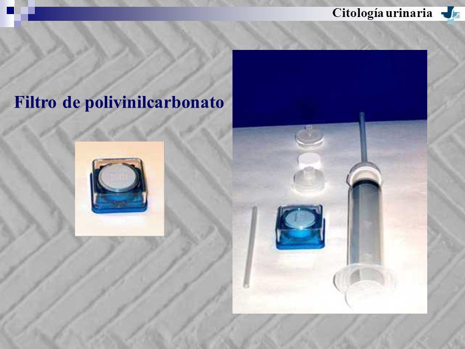 Citología urinaria Filtro de polivinilcarbonato