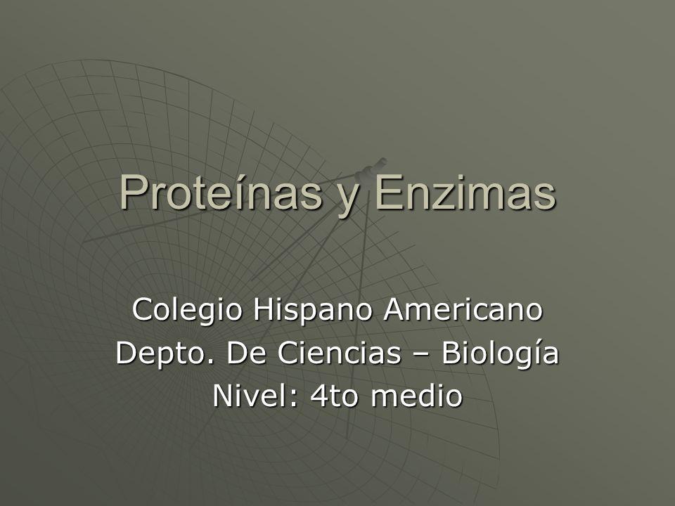 Proteínas y Enzimas Colegio Hispano Americano Depto. De Ciencias – Biología Nivel: 4to medio