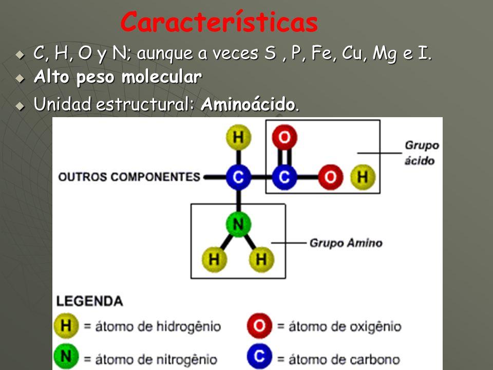 C, H, O y N; aunque a veces S, P, Fe, Cu, Mg e I. C, H, O y N; aunque a veces S, P, Fe, Cu, Mg e I. Alto peso molecular Alto peso molecular Unidad est