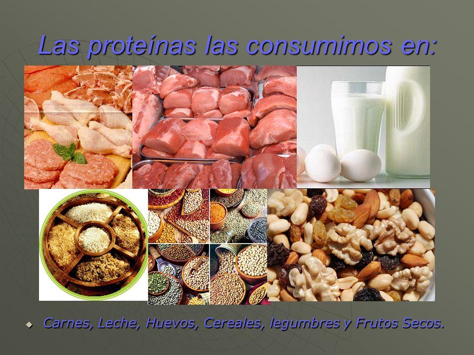 Las proteínas las consumimos en: Carnes, Leche, Huevos, Cereales, legumbres y Frutos Secos. Carnes, Leche, Huevos, Cereales, legumbres y Frutos Secos.