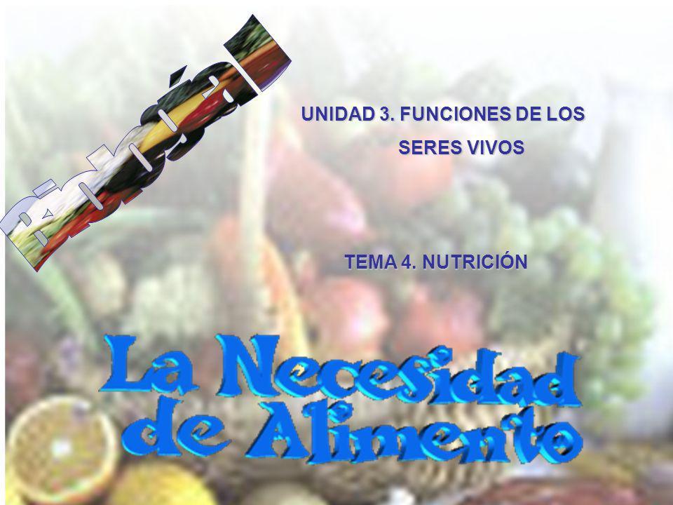 UNIDAD 3. FUNCIONES DE LOS SERES VIVOS TEMA 4. NUTRICIÓN