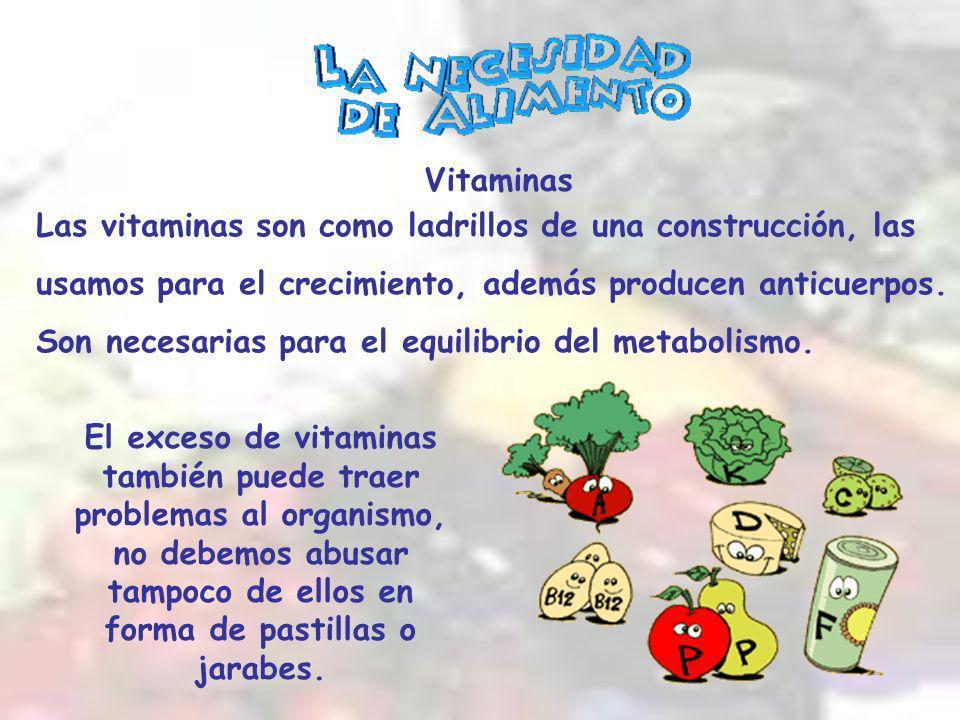 Las vitaminas son como ladrillos de una construcción, las usamos para el crecimiento, además producen anticuerpos.