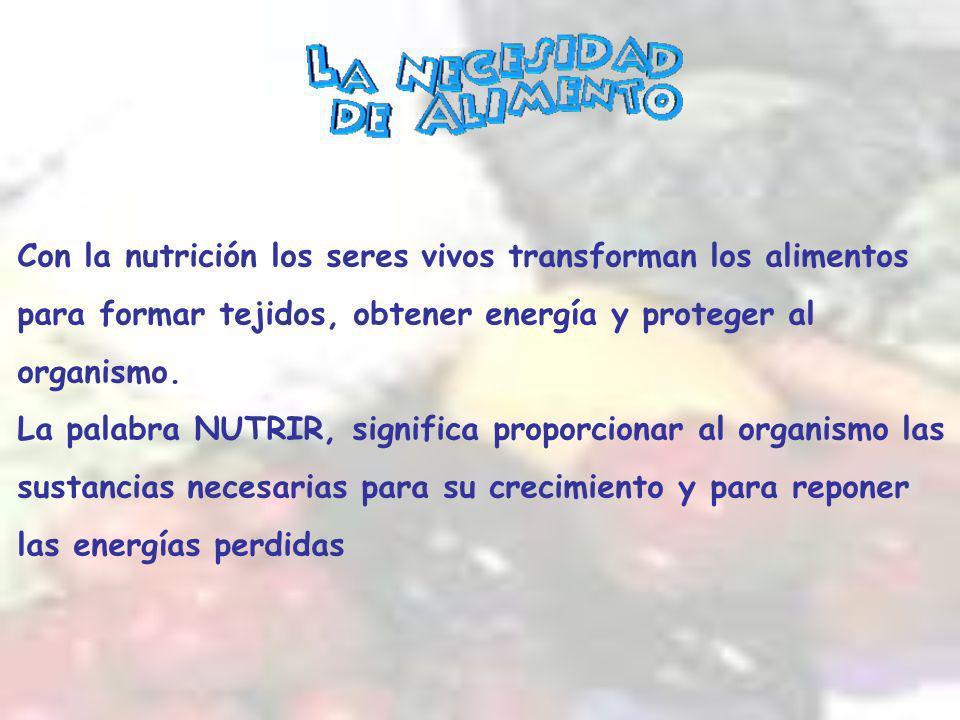 Con la nutrición los seres vivos transforman los alimentos para formar tejidos, obtener energía y proteger al organismo.