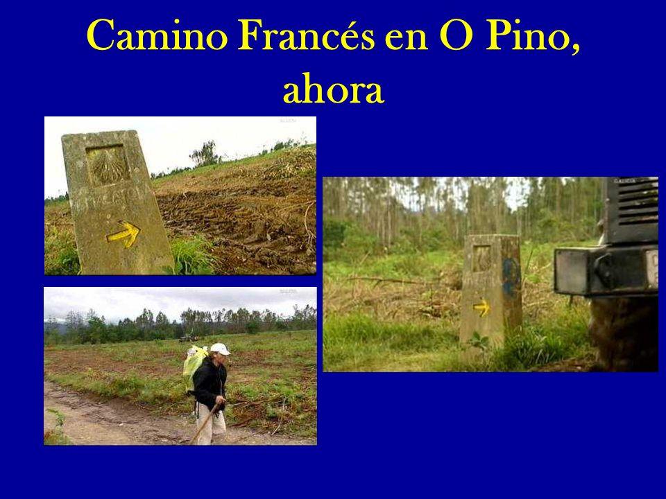 La Batalla de O Pino Hoy gran Santiago, te pido a pesar de los pesares que vuelvas por estos lares en tu caballo subido.