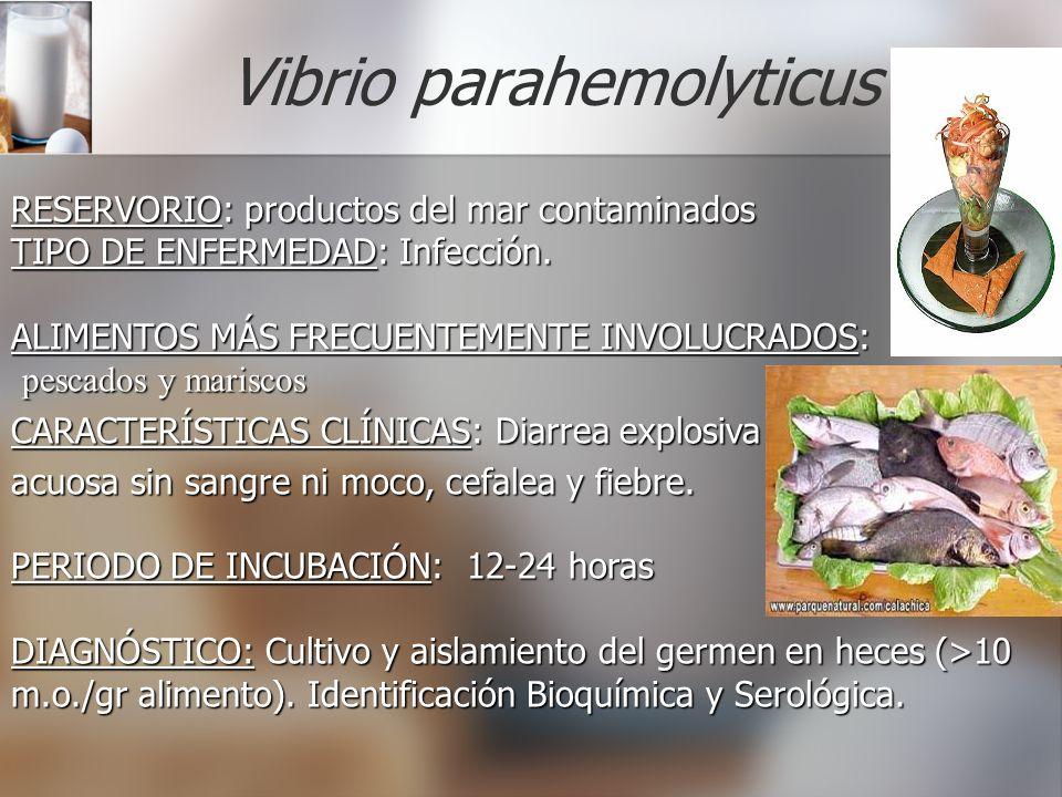 Vibrio parahemolyticus RESERVORIO: RESERVORIO: productos del mar contaminados TIPO DE ENFERMEDAD: ENFERMEDAD: Infección. ALIMENTOS MÁS FRECUENTEMENTE
