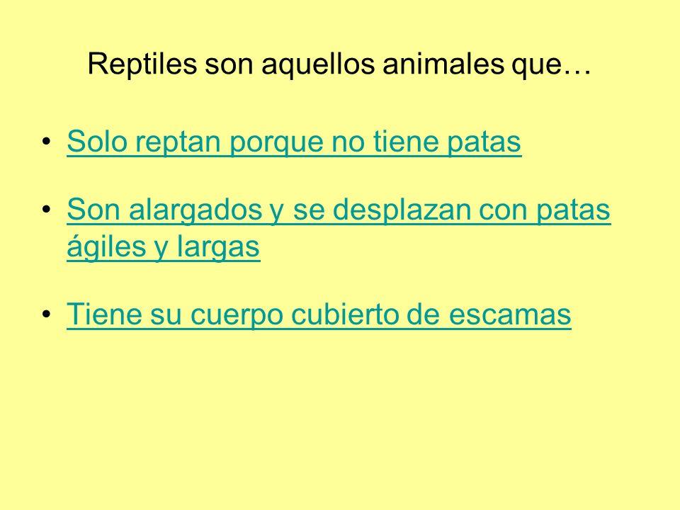 Reptiles son aquellos animales que… Solo reptan porque no tiene patas Son alargados y se desplazan con patas ágiles y largasSon alargados y se desplazan con patas ágiles y largas Tiene su cuerpo cubierto de escamas