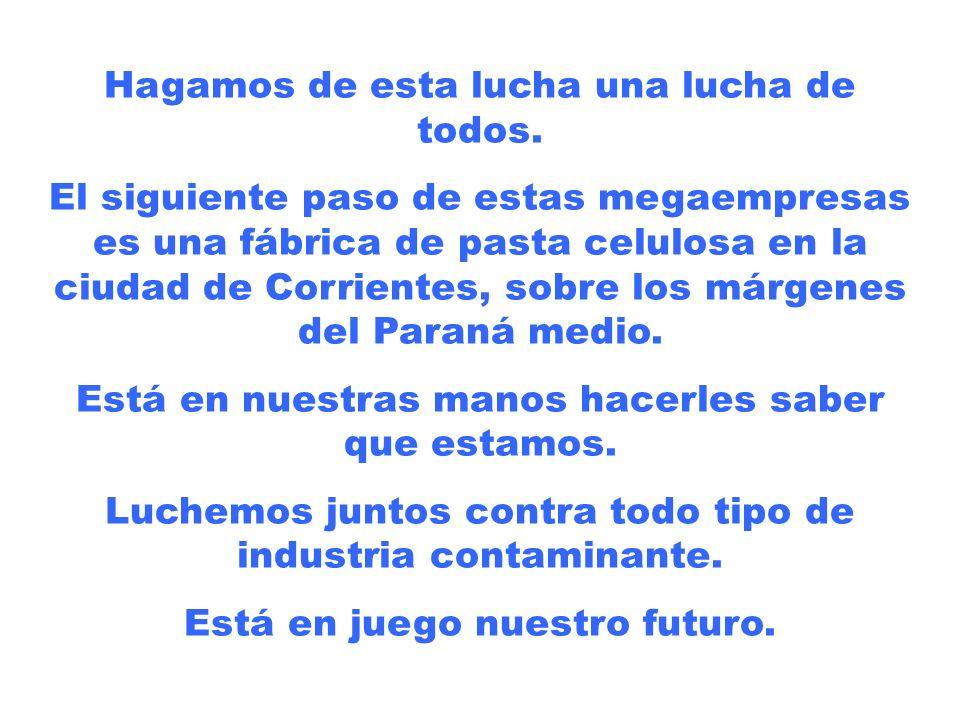 Para mayor información, visita las páginas www.noalapapelera.com.ar ( y formá parte de la Asamblea Ambiental Permanente de Gualeguaychú) www.noalapape