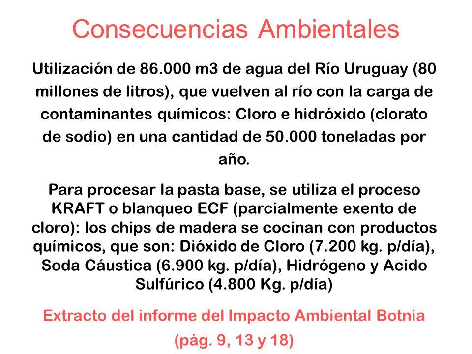 Consecuencias Ambientales Utilización de 86.000 m3 de agua del Río Uruguay (80 millones de litros), que vuelven al río con la carga de contaminantes químicos: Cloro e hidróxido (clorato de sodio) en una cantidad de 50.000 toneladas por año.
