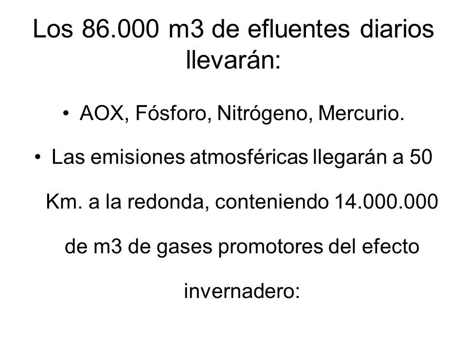Los 86.000 m3 de efluentes diarios llevarán: AOX, Fósforo, Nitrógeno, Mercurio.