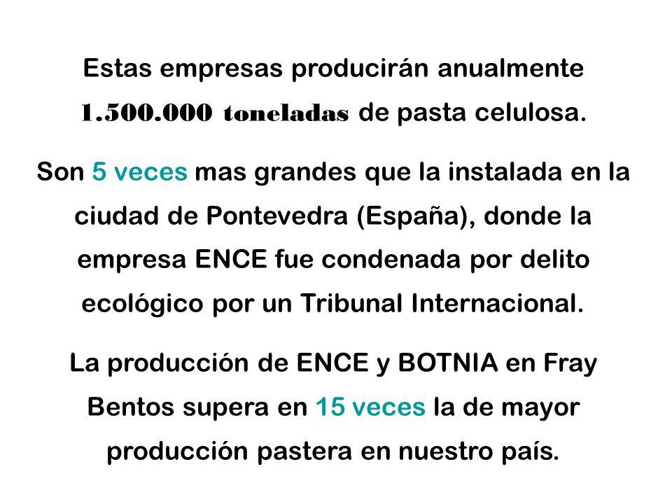 Estas empresas producirán anualmente 1.500.000 toneladas de pasta celulosa.