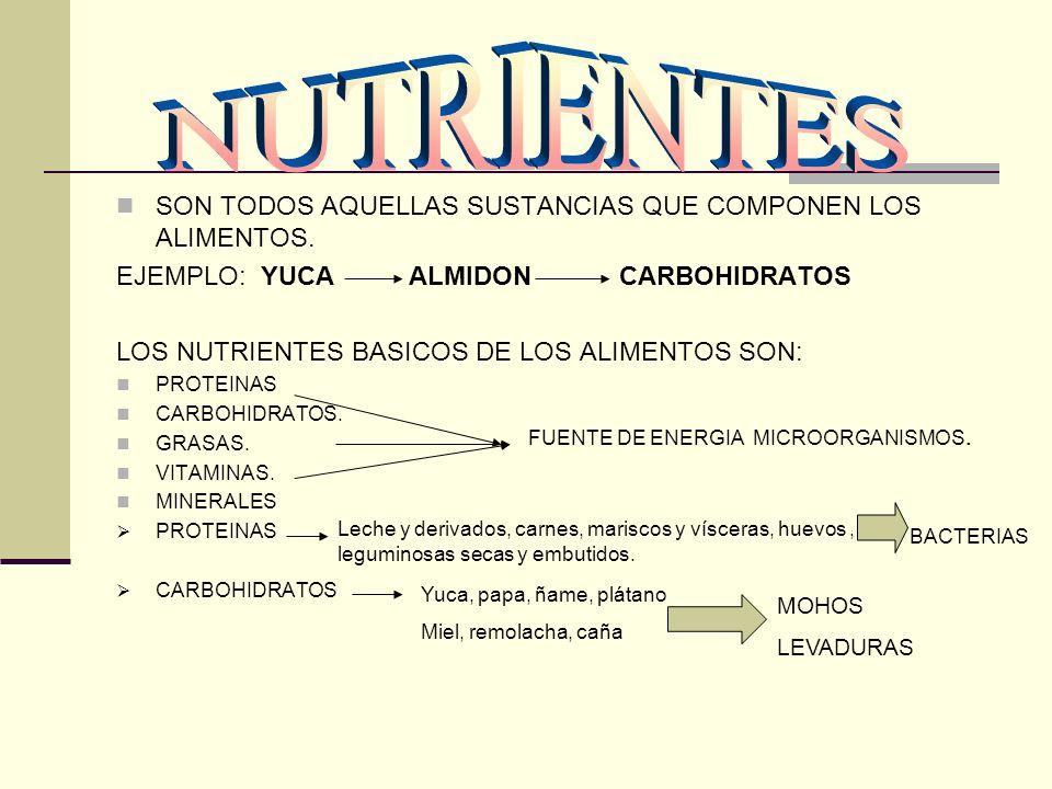 SON TODOS AQUELLAS SUSTANCIAS QUE COMPONEN LOS ALIMENTOS. EJEMPLO: YUCA ALMIDON CARBOHIDRATOS LOS NUTRIENTES BASICOS DE LOS ALIMENTOS SON: PROTEINAS C