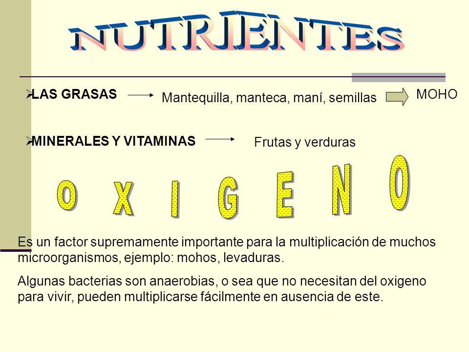 Mantequilla, manteca, maní, semillas LAS GRASAS MINERALES Y VITAMINAS MOHO Frutas y verduras Es un factor supremamente importante para la multiplicaci