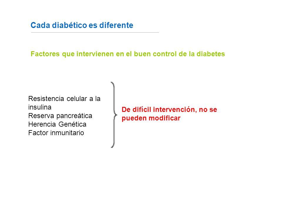Cada diabético es diferente Fuente: http://www.fundaciondiabetes.org/box02.htm Factores que intervienen en el buen control de la diabetes De difícil intervención, no se pueden modificar Resistencia celular a la insulina Reserva pancreática Herencia Genética Factor inmunitario