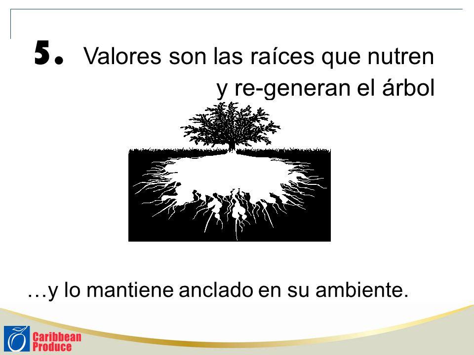 5. Valores son las raíces que nutren y re-generan el árbol …y lo mantiene anclado en su ambiente.