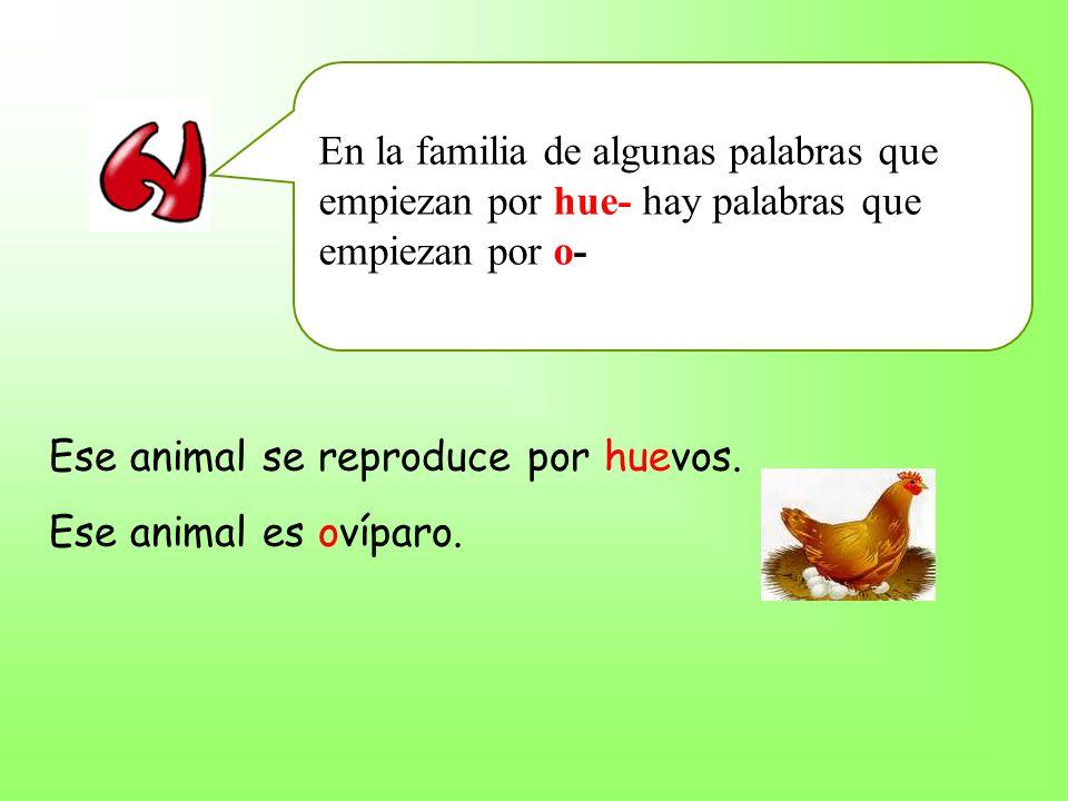 En la familia de algunas palabras que empiezan por hue- hay palabras que empiezan por o- Ese animal se reproduce por huevos.