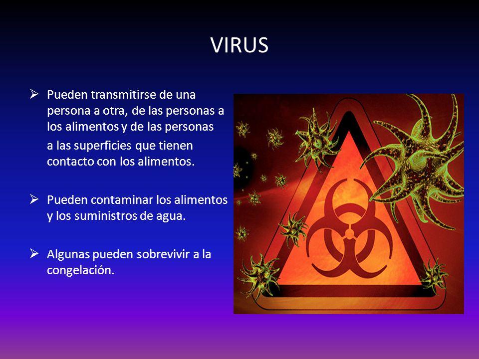 VIRUS Pueden transmitirse de una persona a otra, de las personas a los alimentos y de las personas a las superficies que tienen contacto con los alime