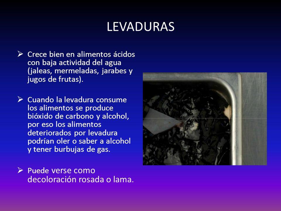 LEVADURAS Crece bien en alimentos ácidos con baja actividad del agua (jaleas, mermeladas, jarabes y jugos de frutas). Cuando la levadura consume los a