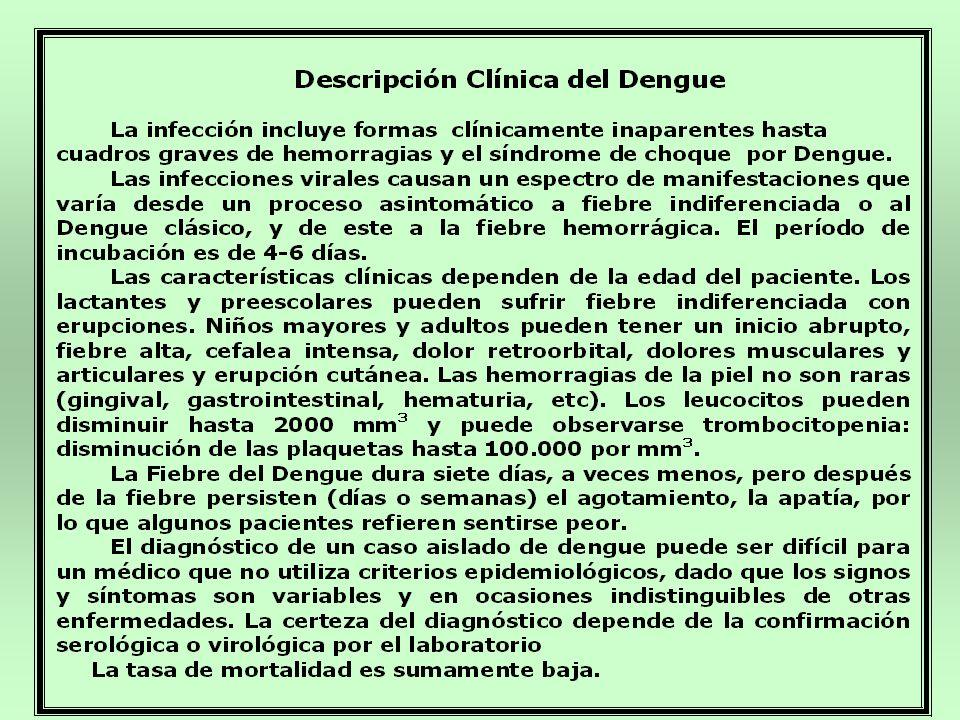 Clasificación de los casos de Dengue Clásico.
