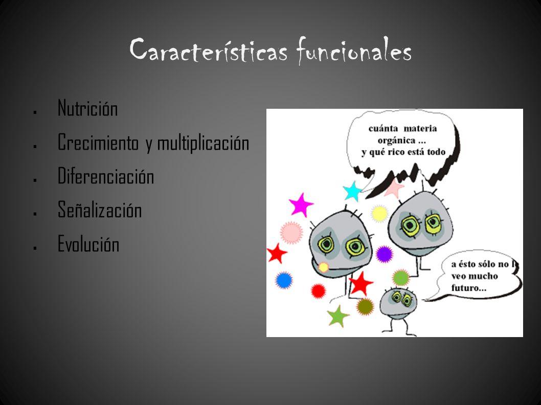 Características funcionales Nutrición Crecimiento y multiplicación Diferenciación Señalización Evolución