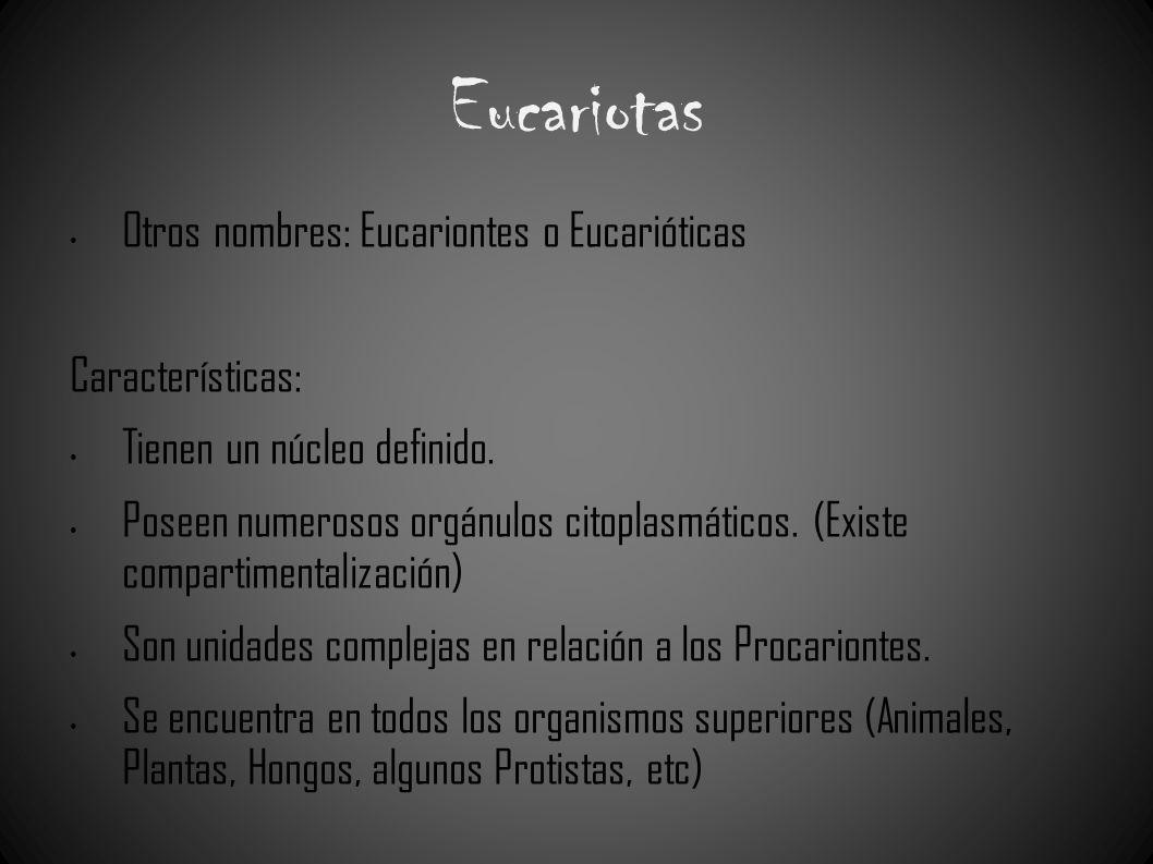 Eucariotas Otros nombres: Eucariontes o Eucarióticas Características: Tienen un núcleo definido. Poseen numerosos orgánulos citoplasmáticos. (Existe c