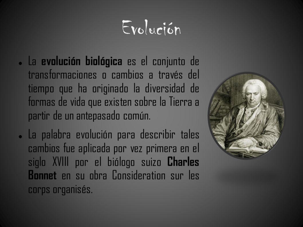 Evolución La evolución biológica es el conjunto de transformaciones o cambios a través del tiempo que ha originado la diversidad de formas de vida que
