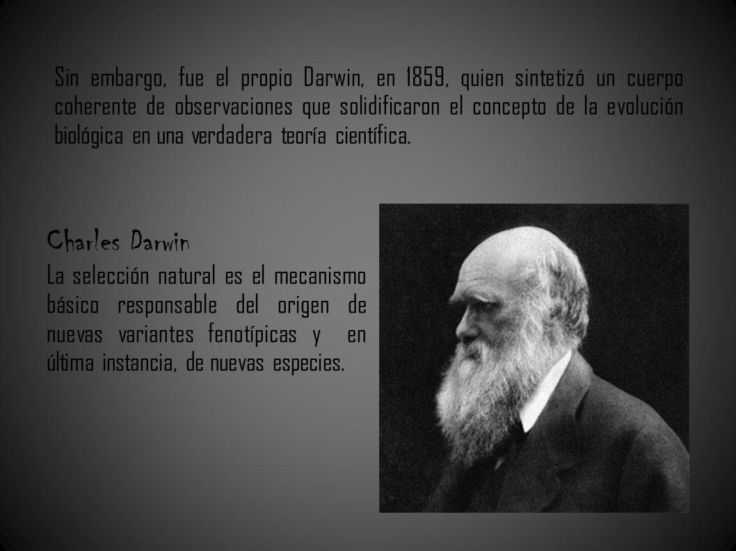 Sin embargo, fue el propio Darwin, en 1859, quien sintetizó un cuerpo coherente de observaciones que solidificaron el concepto de la evolución biológi