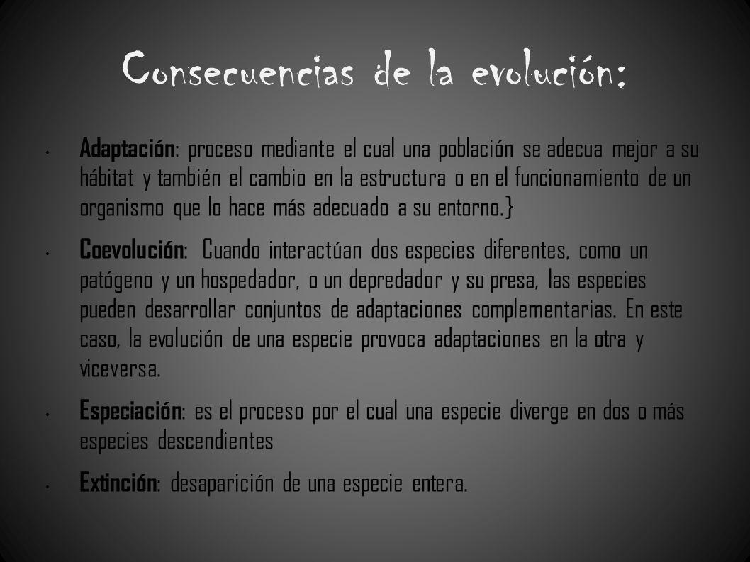 Consecuencias de la evolución: Adaptación : proceso mediante el cual una población se adecua mejor a su hábitat y también el cambio en la estructura o