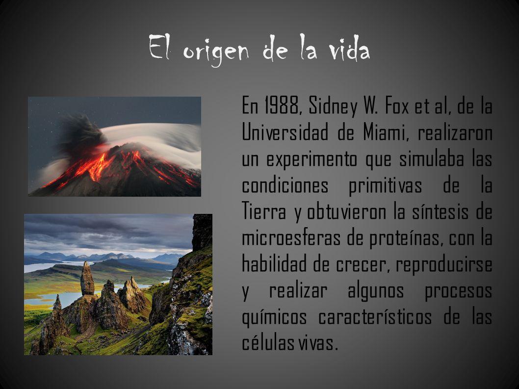 El origen de la vida En 1988, Sidney W. Fox et al, de la Universidad de Miami, realizaron un experimento que simulaba las condiciones primitivas de la