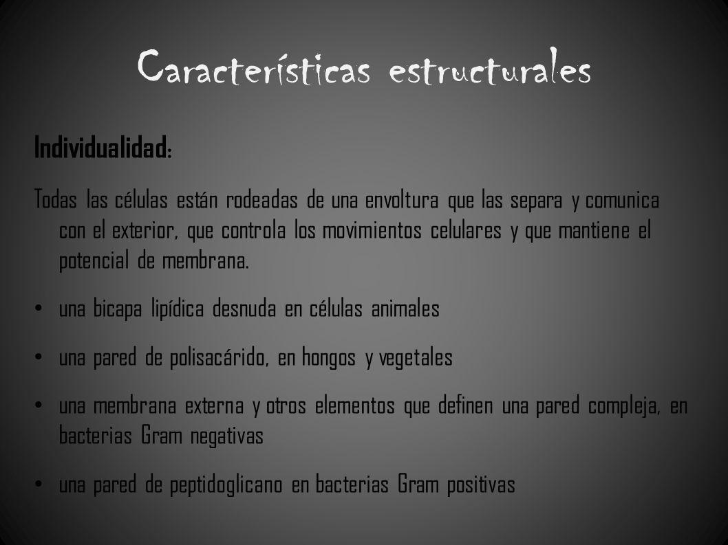Características estructurales Individualidad : Todas las células están rodeadas de una envoltura que las separa y comunica con el exterior, que contro