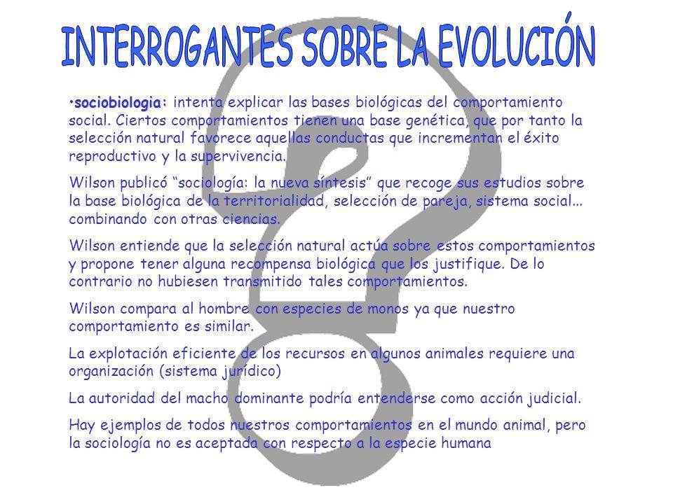 sociobiologia:sociobiologia: intenta explicar las bases biológicas del comportamiento social. Ciertos comportamientos tienen una base genética, que po
