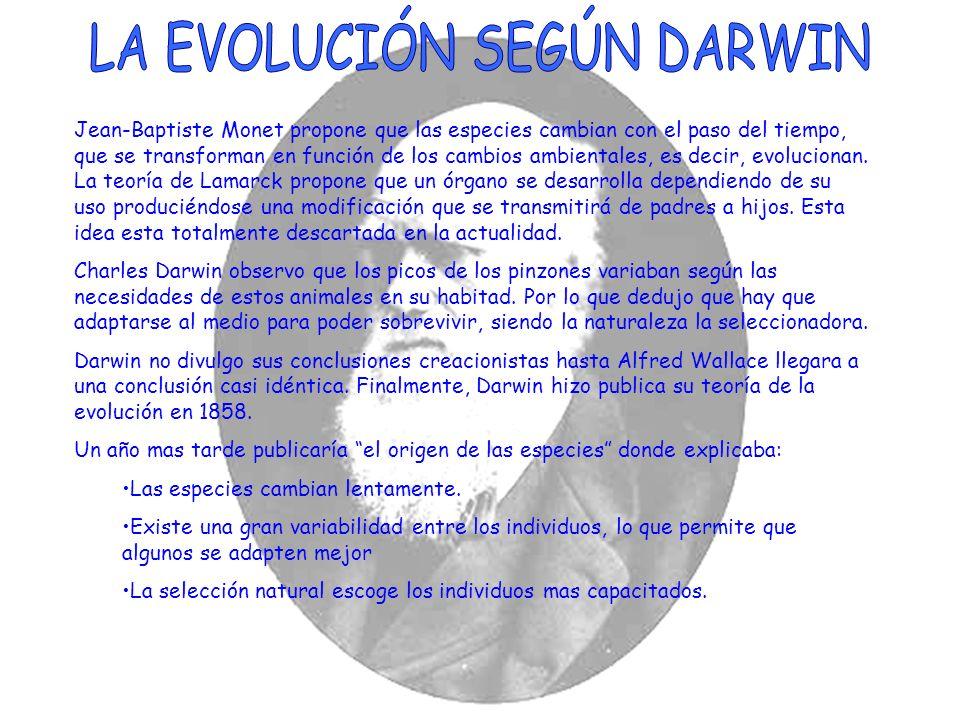Jean-Baptiste Monet propone que las especies cambian con el paso del tiempo, que se transforman en función de los cambios ambientales, es decir, evolu