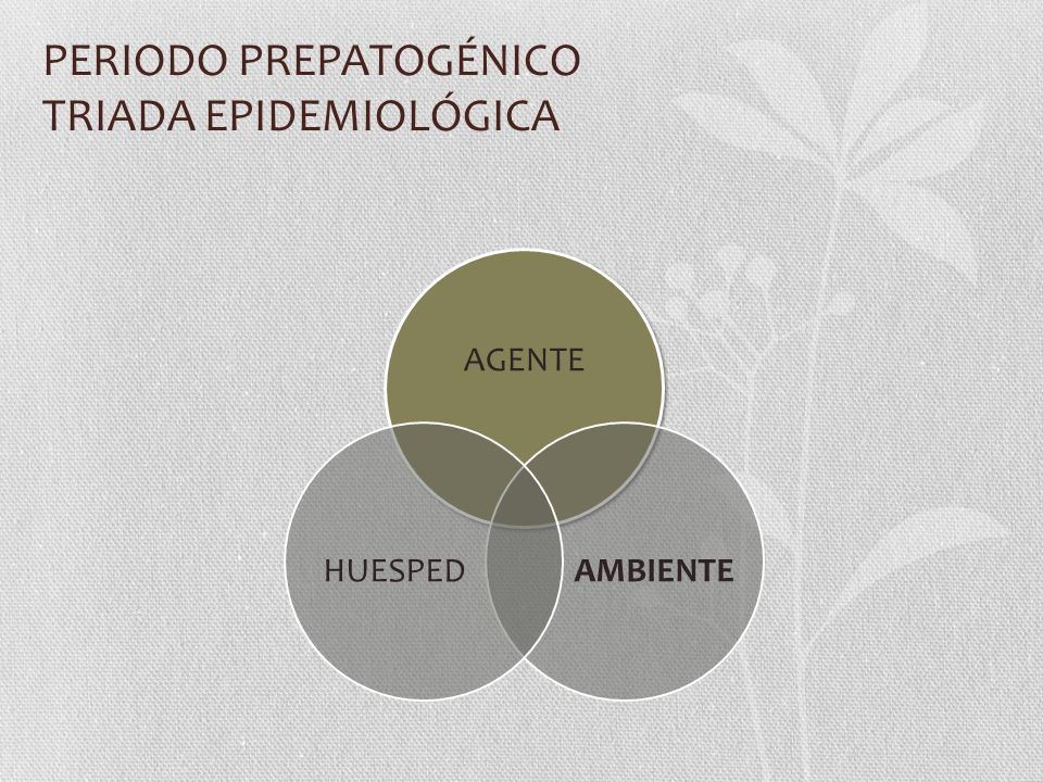 PERIODO PREPATOGÉNICO TRIADA EPIDEMIOLÓGICA AGENTE AMBIENTEHUESPED