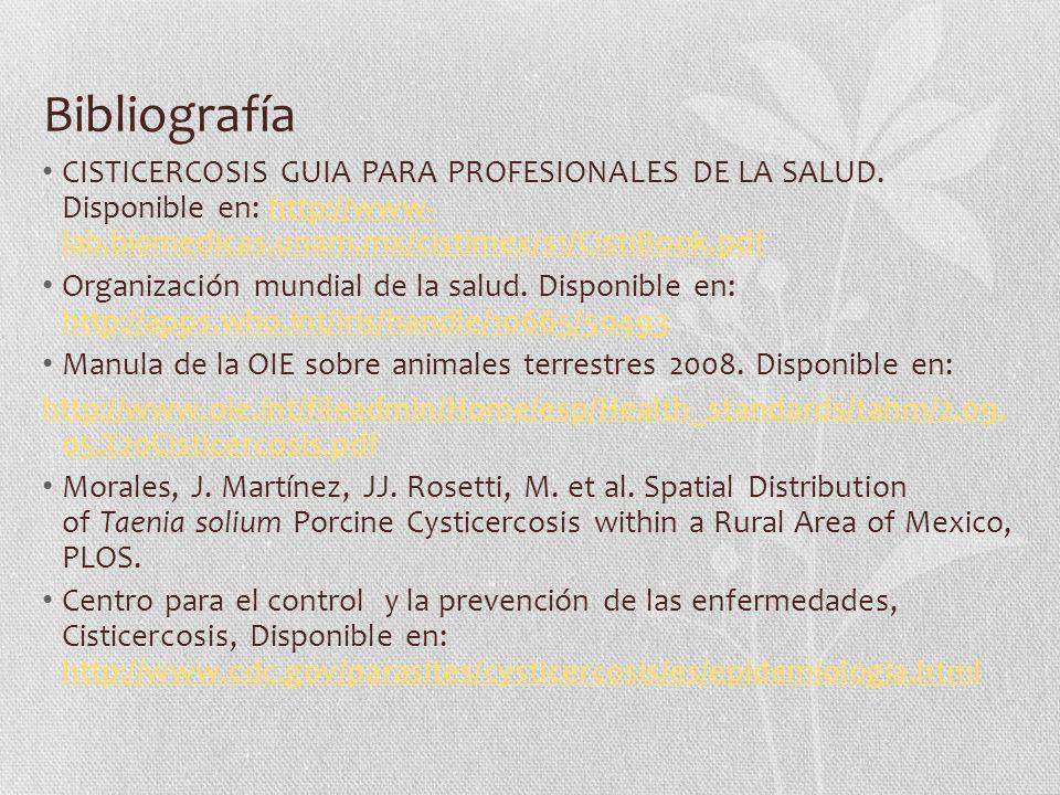 Bibliografía CISTICERCOSIS GUIA PARA PROFESIONALES DE LA SALUD. Disponible en: http://www- lab.biomedicas.unam.mx/cistimex/s1/CistiBook.pdfhttp://www-