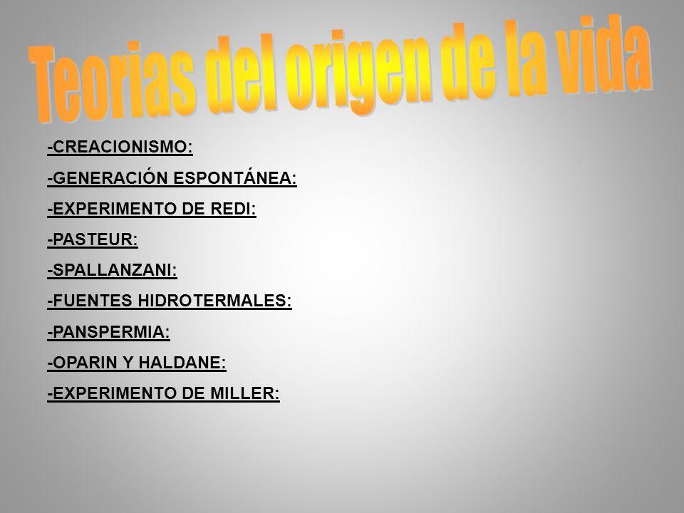 -CREACIONISMO: -GENERACIÓN ESPONTÁNEA: -EXPERIMENTO DE REDI: -PASTEUR: -SPALLANZANI: -FUENTES HIDROTERMALES: -PANSPERMIA: -OPARIN Y HALDANE: -EXPERIMENTO DE MILLER: