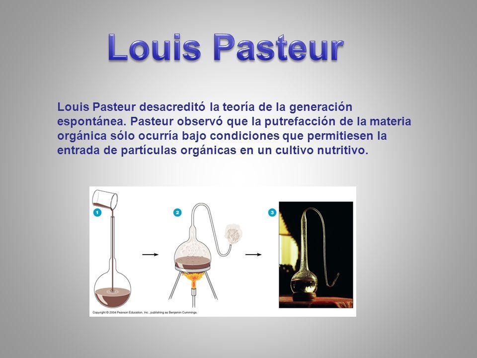 Louis Pasteur desacreditó la teoría de la generación espontánea.