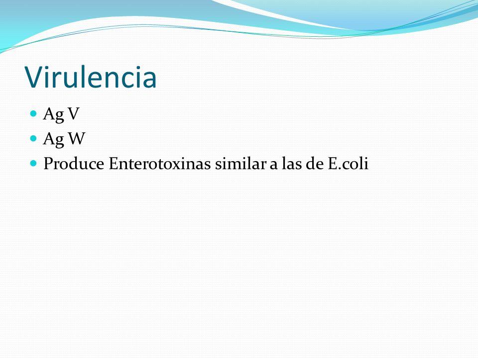 Virulencia Ag V Ag W Produce Enterotoxinas similar a las de E.coli
