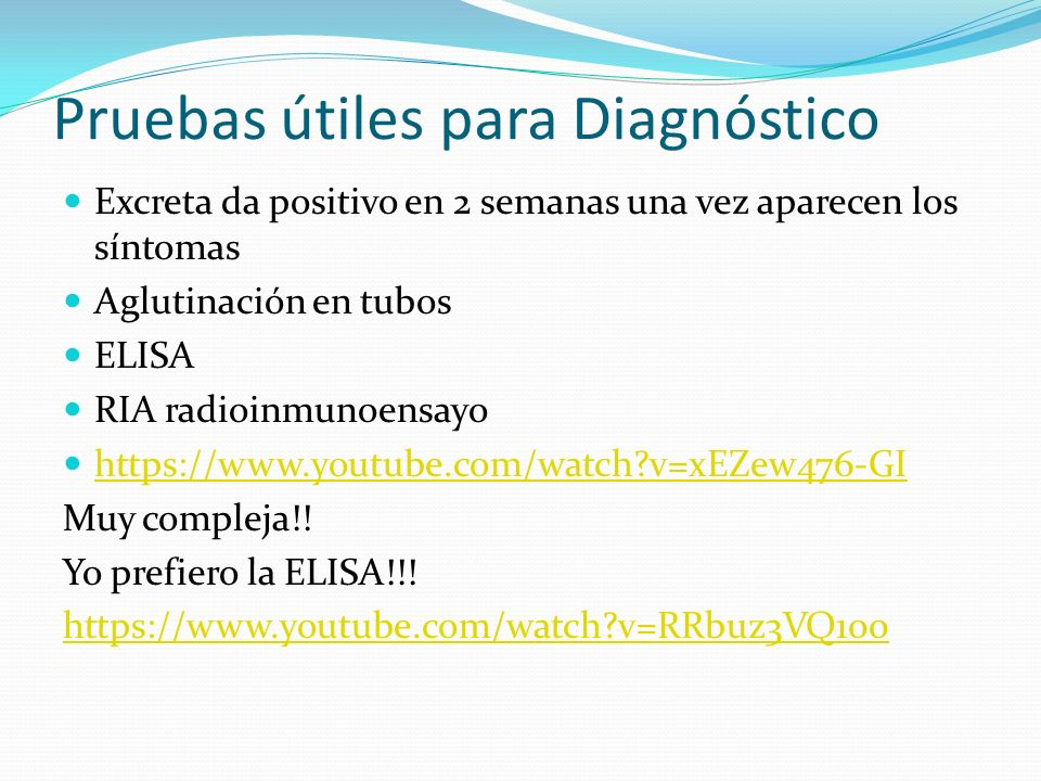 Pruebas útiles para Diagnóstico Excreta da positivo en 2 semanas una vez aparecen los síntomas Aglutinación en tubos ELISA RIA radioinmunoensayo https
