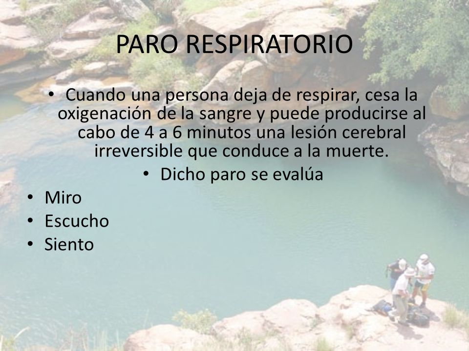 PARO RESPIRATORIO Cuando una persona deja de respirar, cesa la oxigenación de la sangre y puede producirse al cabo de 4 a 6 minutos una lesión cerebra