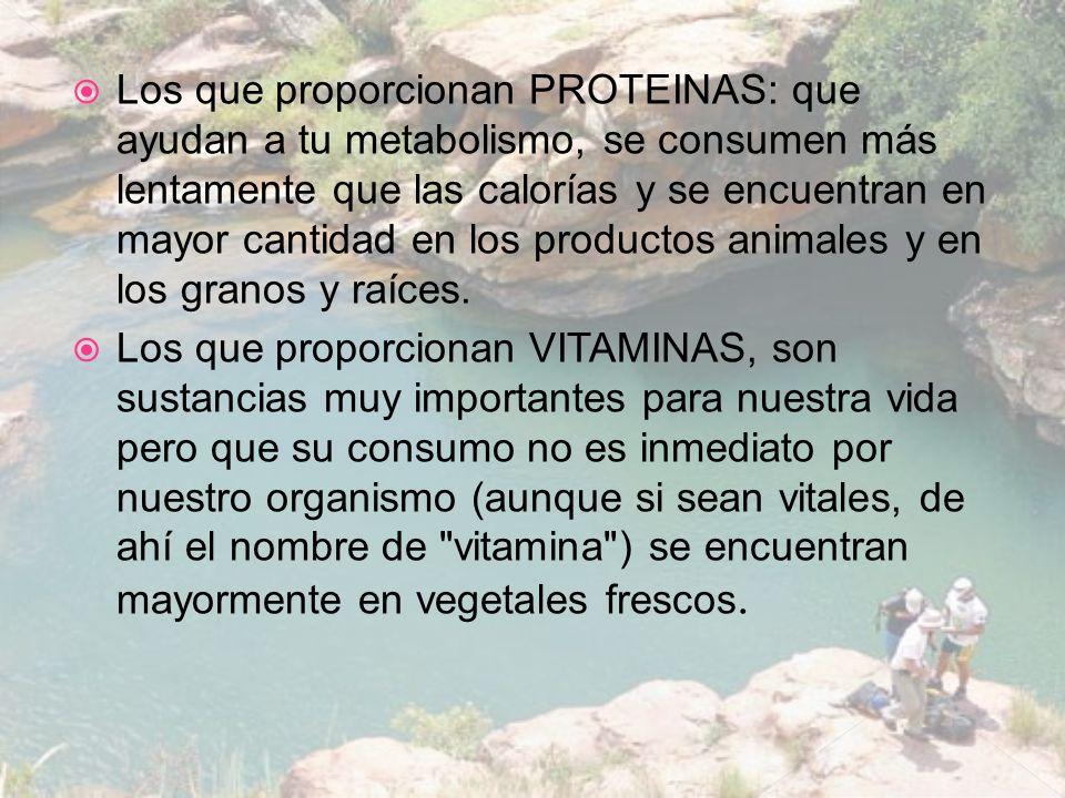 Los que proporcionan PROTEINAS: que ayudan a tu metabolismo, se consumen más lentamente que las calorías y se encuentran en mayor cantidad en los prod