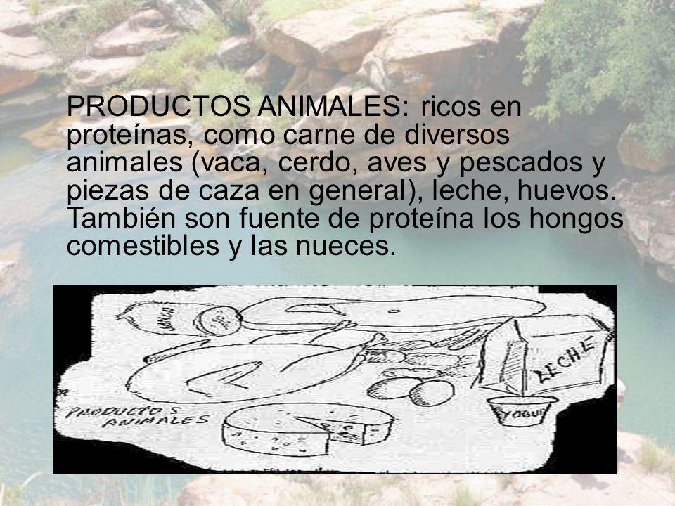 PRODUCTOS ANIMALES: ricos en proteínas, como carne de diversos animales (vaca, cerdo, aves y pescados y piezas de caza en general), leche, huevos. Tam