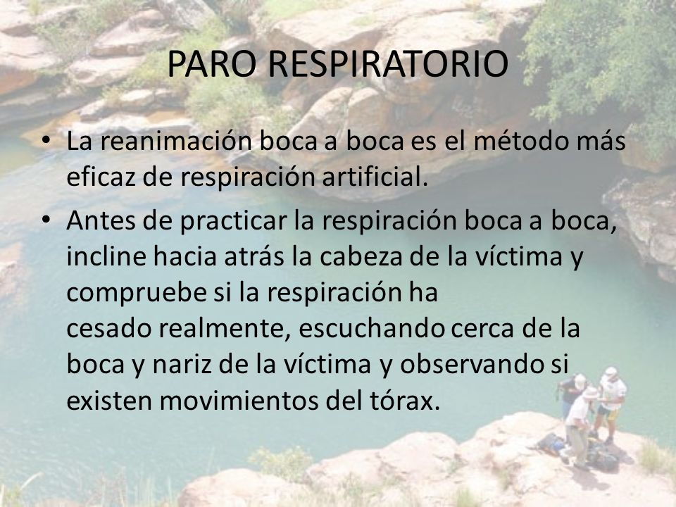 PARO RESPIRATORIO La reanimación boca a boca es el método más eficaz de respiración artificial. Antes de practicar la respiración boca a boca, incline