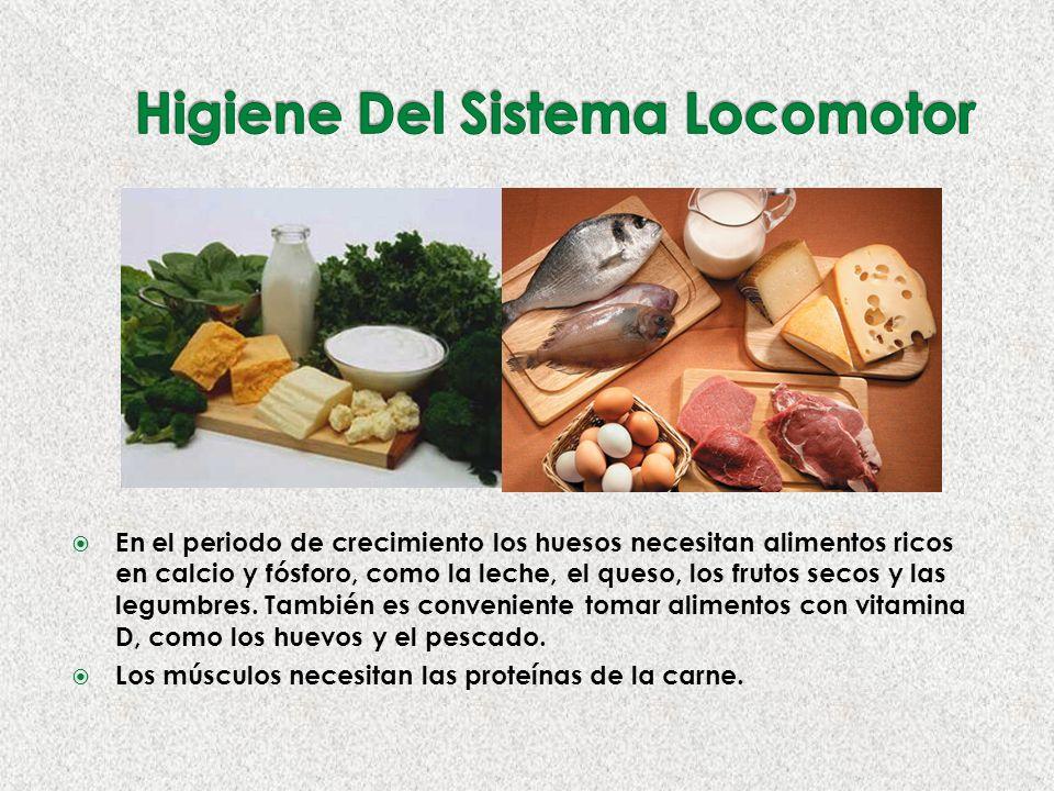 En el periodo de crecimiento los huesos necesitan alimentos ricos en calcio y fósforo, como la leche, el queso, los frutos secos y las legumbres.