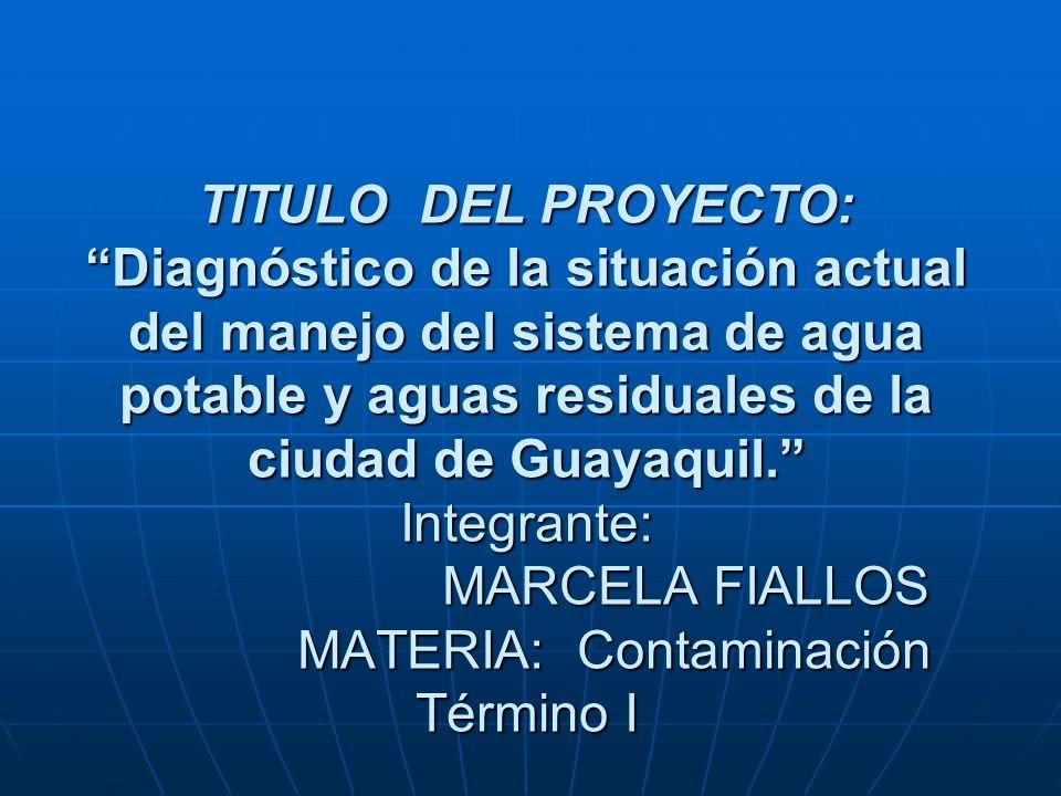 INTRODUCCION La producción de agua potable y el tratamiento de aguas servidas, no son procesos sencillos.