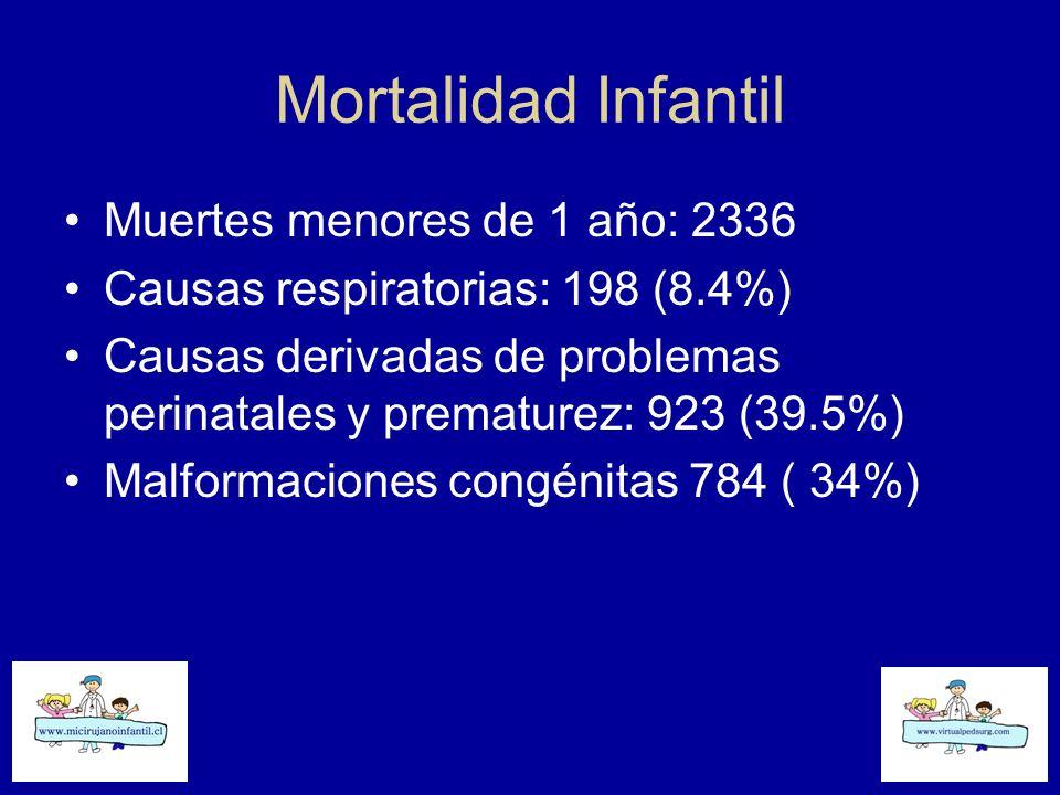 Mortalidad Infantil Muertes menores de 1 año: 2336 Causas respiratorias: 198 (8.4%) Causas derivadas de problemas perinatales y prematurez: 923 (39.5%