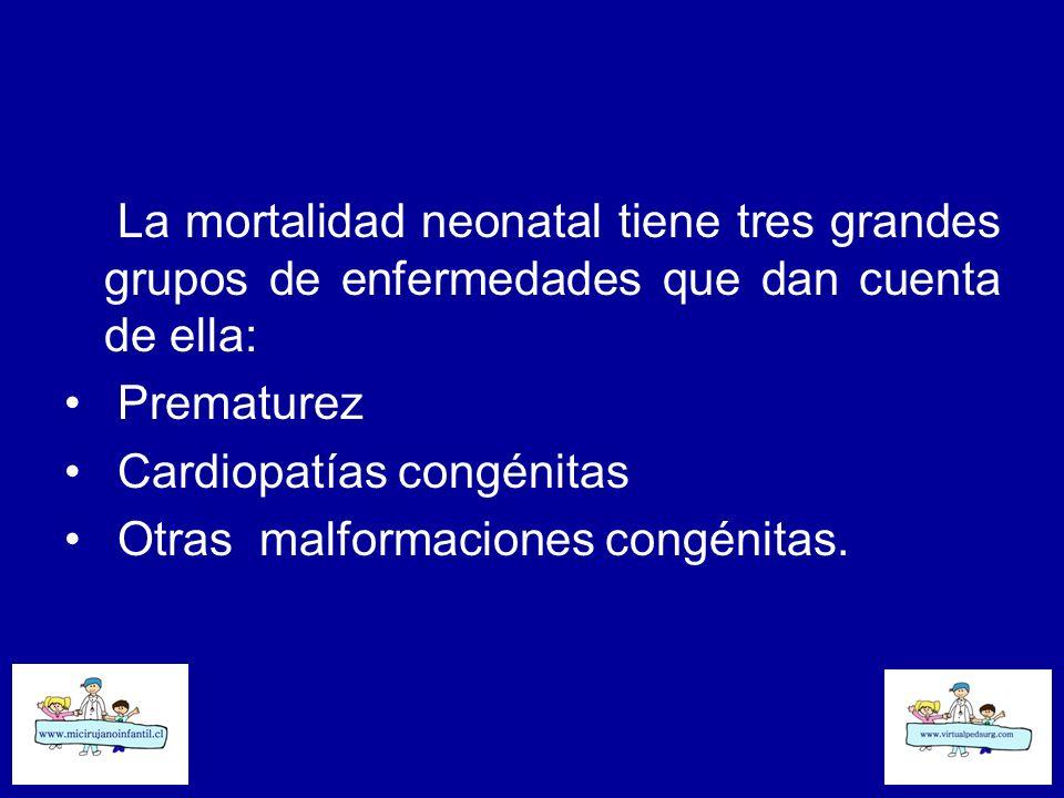 La mortalidad neonatal tiene tres grandes grupos de enfermedades que dan cuenta de ella: Prematurez Cardiopatías congénitas Otras malformaciones congé