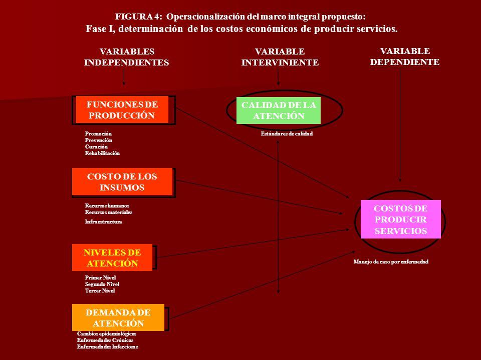 FIGURA 4: Operacionalización del marco integral propuesto: Fase I, determinación de los costos económicos de producir servicios.